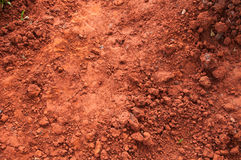 Argilla grungy asciutta rossa Fotografia Stock
