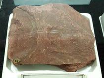 Argillite catlinite Sedimentgesteine lizenzfreie stockfotografie