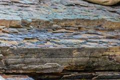 Argillite endurecido mergulhado da argila Fundo da textura fotografia de stock royalty free