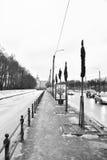 Argine del canale del cigno all'inverno Immagini Stock