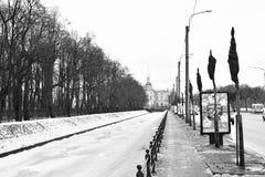 Argine del canale del cigno all'inverno Fotografia Stock Libera da Diritti