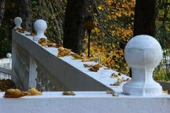 Argine di autunno di un country_2 distante fotografia stock