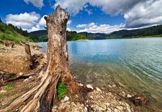 Argini il lago Bolboci in montagne di Bucegi, Romania Fotografia Stock Libera da Diritti