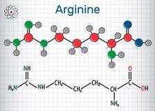 Arginine Arg, R amino zjadliwa molekuła, ja używa w biosynt ilustracja wektor