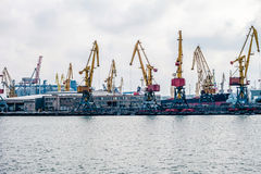 сargo cranes in the port Royalty Free Stock Photos