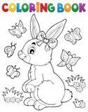 Argomento 2 del coniglio del libro da colorare Fotografie Stock Libere da Diritti