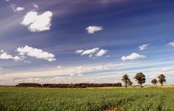 Argrarian landscape Stock Photography