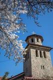 Argt torn för kyrka av den Batkun kloster fotografering för bildbyråer