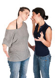 Argumentation de soeurs Photo stock