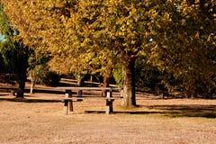 Argumentos de comida campestre en otoño fotografía de archivo libre de regalías