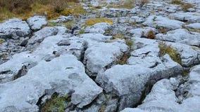 Argumentos pedregosos extraños en el Burren Irlanda - cantidad aérea del vuelo almacen de video