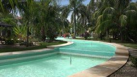 Argumentos tropicales de fuente de agua de las vacaciones metrajes