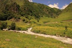 Argun River in Khevsureti, Georgia Royalty Free Stock Photography