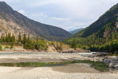 Argut river. Mountain Altai landscape. Russia. Royalty Free Stock Photography