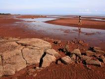 argyle γυναίκα ακτών Στοκ εικόνα με δικαίωμα ελεύθερης χρήσης