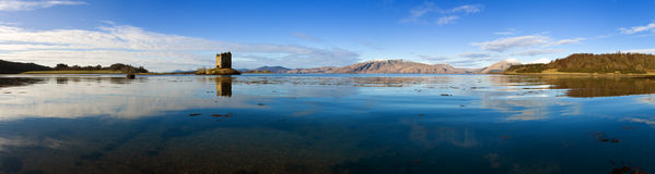 argyll κυνηγός της Σκωτίας υψη Στοκ Φωτογραφία