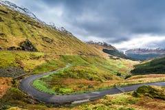 Argyll Forest Park, högland Arkivfoto