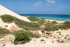 Arher-Strand auf Socotrainsel, der Jemen Stockbild