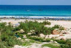 Arher strand på Socotraön, Yemen Arkivfoton