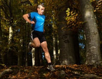 Arhlete in trailrunning Stock Image