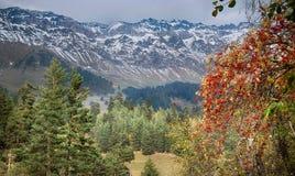 Arhyz. Russia. Caucasus. Karachaevo-Cherkesia. Royalty Free Stock Photography