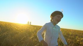 Aria aperta felice della famiglia che cammina insieme sul giacimento di grano con il ragazzo sorridente funzionamento del bambino archivi video