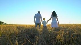 Aria aperta felice della famiglia che cammina sul giacimento di grano con il ragazzino Madre, padre, bambino del figlio divertend video d archivio