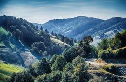 Aria för svart skog, Tyskland arkivfoto