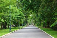 aria fresca in parco l'area verde crea un buon ambiente nella città affinchè la gente abbia attività all'aperto fotografie stock