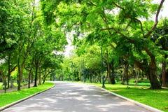 Aria fresca in parco l'area verde crea un buon ambiente nella città affinchè la gente abbia attività all'aperto immagini stock libere da diritti