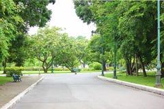 Aria fresca in parco l'area verde crea un buon ambiente nella città affinchè la gente abbia attività all'aperto fotografia stock libera da diritti