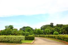 Aria fresca in parco l'area verde crea un buon ambiente nella città affinchè la gente abbia attività all'aperto il modo della pas immagine stock