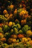 Arial-Ansicht des Falles in Neu-England Stockfotos