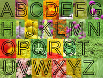 Arial flowers letters. These letters are 700 pixel big and use arial font template, they can be cut and pasted with the background or you can just use the letter Royalty Free Stock Photo