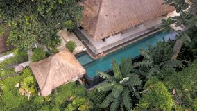 Arial fors av den lyxiga bungalowvillan som lokaliseras i djungler med den blåa simbassängen och modellen royaltyfri foto