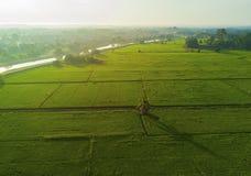 Arial sikt av det gröna risfältfältet på East Asia under soluppgång arkivbild