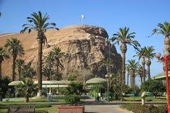 Arica, Cile Fotografia Stock