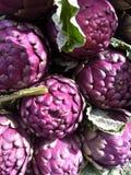紫色arichokes 免版税库存图片