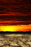 Arid. Orange sky on the arid Royalty Free Stock Photography