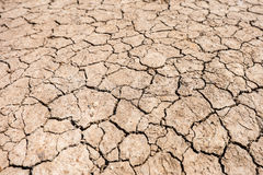 Arid area Royalty Free Stock Photos