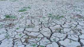 Arid areas of the country due to natural disasters Royalty Free Stock Photos