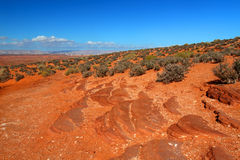 Arid Arizona Landscape Stock Images