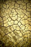 Arid background Royalty Free Stock Photos