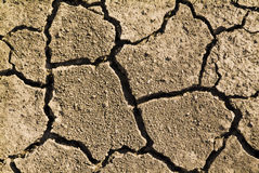Arid climate. A dry ground a result climate change royalty free stock image
