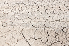 Arid Climate Stock Photos