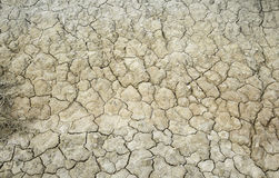 Arid cracked earth Royalty Free Stock Image