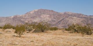 Arid Desert Stock Image