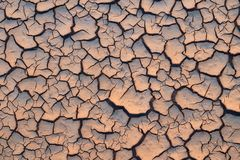 Arid and dry cracked land. Global Warming effect stock photography