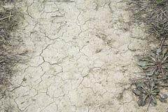 Arid dry field Stock Photos