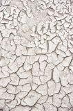 Arid earth Royalty Free Stock Image